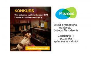 Promocoja Providenta na święta