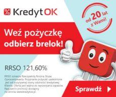 Kredyt OK - oferta do 3000 zł pierwszej pożyczki za 0