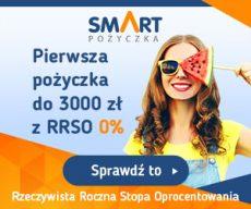 Smartpozyczkapl - darmowa chwilówka do 600 zł - banner lato