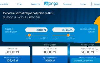 Wonga.pl - zrzut ekranu strony