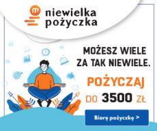 Niewielka Pożyczka - chwilówki online - do 600 zł za darmo - banner