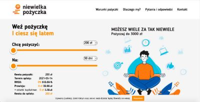 Niewielka Pożyczka - podgląd strony www