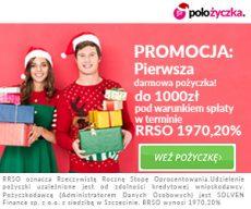 polozyczka.pl 300x250 banner na święta