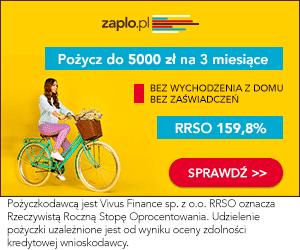 Zaplo.pl - pożyczki ratalne - banner wiosenny