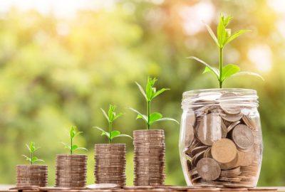 Inwestycja i rosnące środki na emeryturze - sadzonki z monetami