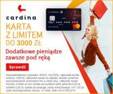 Cardina.pl - banner 300x250
