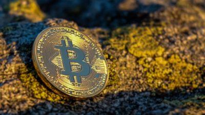Bitcoin - złoto cyfrowe? 2021 rok