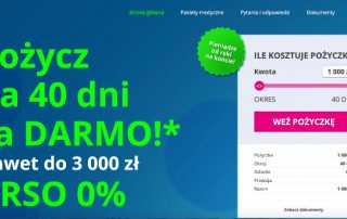 Prestito.pl - podgląd strony internetowej pożyczkodawcy