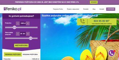 Feniko - podgląd strony www