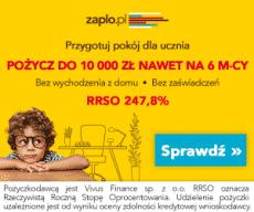 zaplo.pl 300x250 - banner jesień - pokój dla ucznia