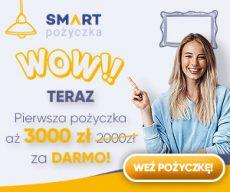 Smartpozyczka.pl - darmowa chwilówka do 1200 zł - banner jesień 3000 złotych